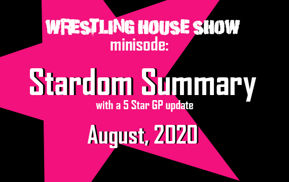Stardom Summary: August 2020 – WHS mini