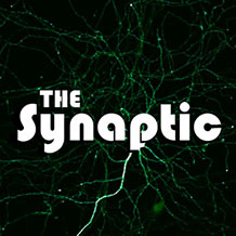 The Synaptic